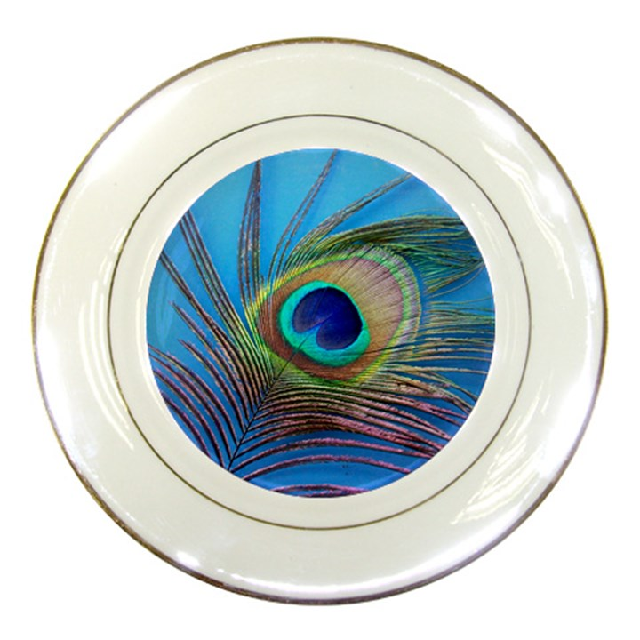 Peacock Feather Blue Green Bright Porcelain Plates