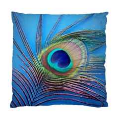 Peacock Feather Blue Green Bright Standard Cushion Case (one Side)