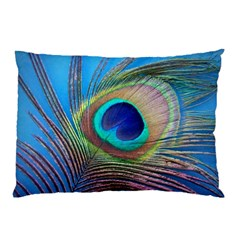 Peacock Feather Blue Green Bright Pillow Case (two Sides)