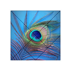 Peacock Feather Blue Green Bright Acrylic Tangram Puzzle (4  X 4 )