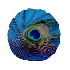 Peacock Feather Blue Green Bright Standard 15  Premium Flano Round Cushions