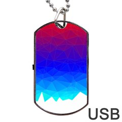 Gradient Red Blue Landfill Dog Tag Usb Flash (one Side)