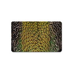 Peacock Bird Feather Gold Blue Brown Magnet (name Card)