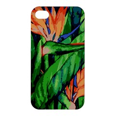 Flowers Art Beautiful Apple Iphone 4/4s Premium Hardshell Case