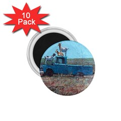 Goats On A Pickup Truck 1 75  Magnets (10 Pack)