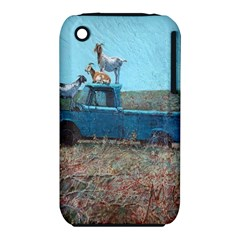 Goats on a Pickup Truck iPhone 3S/3GS