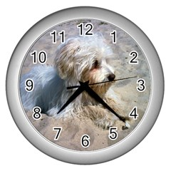Maltese On Beach Wall Clocks (Silver)