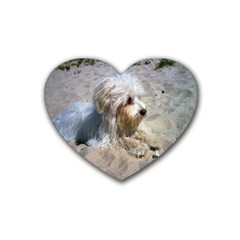 Maltese On Beach Heart Coaster (4 pack)