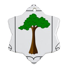 Coat Of Arms Of Equatorial Guinea Snowflake Ornament (two Sides)