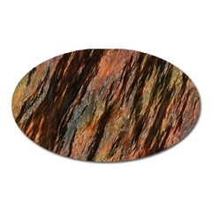 Texture Stone Rock Earth Oval Magnet