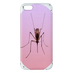 Mosquito Pink Insect Blood Apple iPhone 5 Premium Hardshell Case