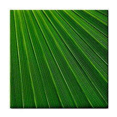 Green Lines Macro Pattern Tile Coasters