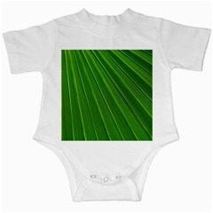 Green Lines Macro Pattern Infant Creepers