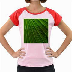 Green Lines Macro Pattern Women s Cap Sleeve T Shirt