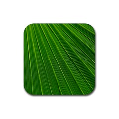 Green Lines Macro Pattern Rubber Square Coaster (4 pack)