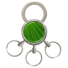 Green Lines Macro Pattern 3 Ring Key Chains