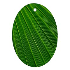 Green Lines Macro Pattern Oval Ornament (two Sides)