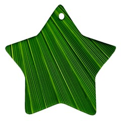 Green Lines Macro Pattern Star Ornament (Two Sides)