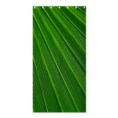 Green Lines Macro Pattern Shower Curtain 36  X 72  (stall)