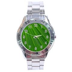 Green Lines Macro Pattern Stainless Steel Analogue Watch