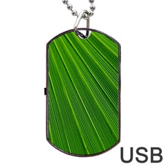 Green Lines Macro Pattern Dog Tag Usb Flash (one Side)