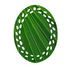 Green Lines Macro Pattern Oval Filigree Ornament (two Sides)