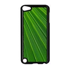 Green Lines Macro Pattern Apple Ipod Touch 5 Case (black)
