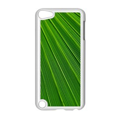 Green Lines Macro Pattern Apple Ipod Touch 5 Case (white)