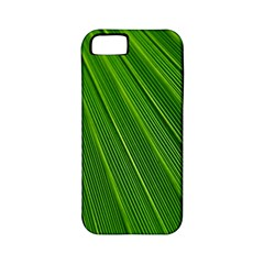 Green Lines Macro Pattern Apple iPhone 5 Classic Hardshell Case (PC+Silicone)