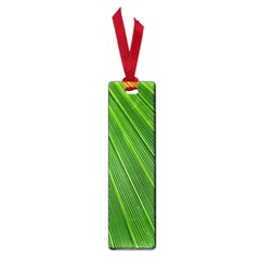 Green Lines Macro Pattern Small Book Marks
