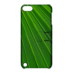 Green Lines Macro Pattern Apple Ipod Touch 5 Hardshell Case With Stand