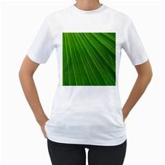 Green Lines Macro Pattern Women s T Shirt (white)