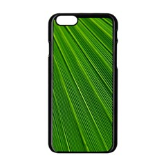 Green Lines Macro Pattern Apple Iphone 6/6s Black Enamel Case