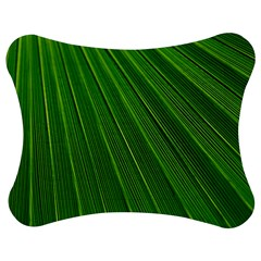 Green Lines Macro Pattern Jigsaw Puzzle Photo Stand (bow)