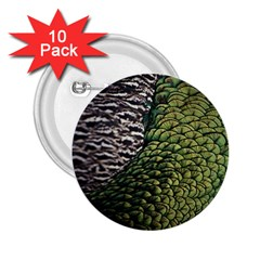 Bird Feathers Green Brown 2.25  Buttons (10 pack)