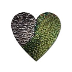 Bird Feathers Green Brown Heart Magnet
