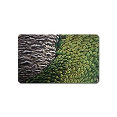 Bird Feathers Green Brown Magnet (name Card)