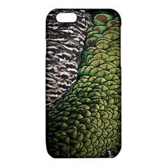 Bird Feathers Green Brown iPhone 6/6S TPU Case