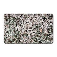 Ice Leaves Frozen Nature Magnet (rectangular)