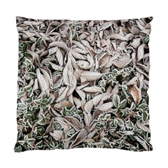 Ice Leaves Frozen Nature Standard Cushion Case (two Sides)