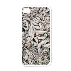 Ice Leaves Frozen Nature Apple Iphone 4 Case (white)