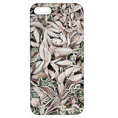 Ice Leaves Frozen Nature Apple Iphone 5 Hardshell Case With Stand