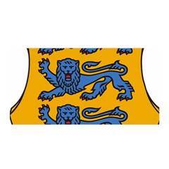 Lesser Arms of Estonia  Satin Wrap
