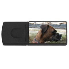 Boxer Brindle USB Flash Drive Rectangular (4 GB)