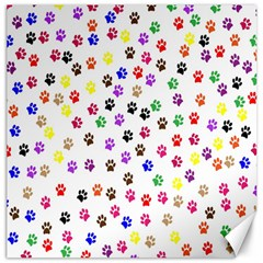 Paw Prints Background Canvas 20  X 20