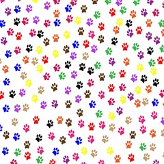 Paw Prints Background Magic Photo Cubes