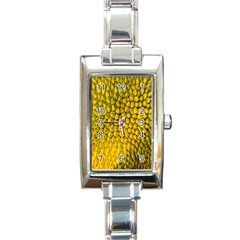 Jack Shell Jack Fruit Close Rectangle Italian Charm Watch