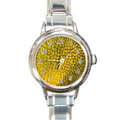 Jack Shell Jack Fruit Close Round Italian Charm Watch