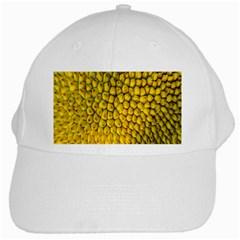 Jack Shell Jack Fruit Close White Cap