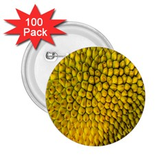 Jack Shell Jack Fruit Close 2.25  Buttons (100 pack)